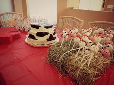 Farm theme 1st birthday party, cow print cake and farm animal cake pops in hay bale