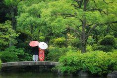 The Old Yasuda garden