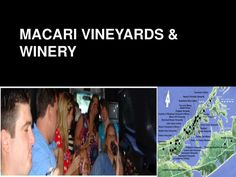 Winery Limo is the finest in luxury limo service. As a full Long Island limousine service, we own all of our cars, we can accommodate groups of any size. Long Island Winery, Limo, Wine Tasting, Vineyard, Cars, Luxury, Autos, Car, Vineyard Vines