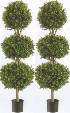 Two 66 Inch Artificial Boxwood Triple Ball Topiary Trees Potted -- You can get additional details at the image link.