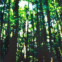 Alex Dimercurio   Saatchi Art Beech Tree, Wonderful Time, New Zealand, Northern Lights, Saatchi Art, Original Paintings, Around The Worlds, Journey, Canvas