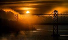 San Francisco Bay Bridge meets Carl the Fog