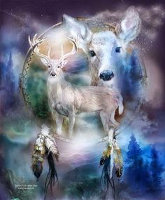 """The deer is considered sacred by the Cherokee...its skin is used to wrap sacred objects, such as the crystal that is kept for seeing ahead and for protecting us from other energies and influences. The deer was a favorite meal of the Cherokee. Dear hunters knew how to proprly offer prayers and make preparations before hunting the deer. Sacred ceremonies followed the killing of a deer, in which the hunters gave thanks and asked for """"clearing"""" or forgiveness."""
