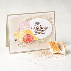 So Many Shells Photopolymer Stamp Set by Stampin' Up! Beach Cards, Friends Are Like, Sympathy Cards, Homemade Cards, Stampin Up Cards, Sea Shells, Just In Case, Cardmaking, Projects To Try