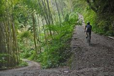 youcantbuyland: pureclimber: http://atsushitanno.blogspot.jp/2014/06/chartreuse-ride-in-nogouchi-gravel.html They love gravel in Japan.