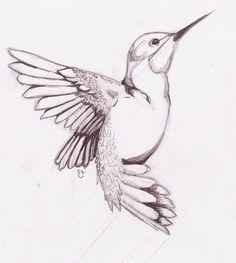 Drawings birds humming bird sketch on deviantart Bird Drawings, Animal Drawings, Pencil Drawings, Drawing Birds Easy, Easy Drawings, How To Draw Birds, Bird Pencil Drawing, Pencil Shading, Drawing Animals