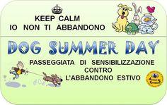 """No all'abbandono estivo passeggiando: è il """"Dog Summer Day"""" :http://www.qualazampa.news/event/no-allabbandono-estivo-passeggiando-e-il-dog-summer-day/"""