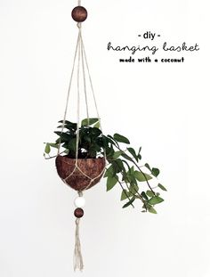 DIY Upcycling Kokosnuss Blumenampel | Coconut Makramee Hanging Basket | Pflanzen | plants | do it yourself | deko | basteln | urban Jungle bloggers | Zimmerpflanzen | Anleitung Idee Tutorial kreativ | handmade | coconut | plant pot | Blumentopf | grüner Wohnen