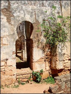 The old mosque by mhobl, via Flickr