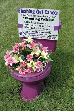 "relay for life fundraising purple toilets. Like ""Flamingo-ing"" someone, but a lot less set up! A fantastic Idea to raise some money for your team, and draw some attention to our cause!"