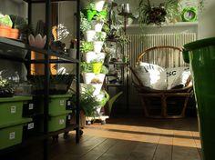 TERRAROOM | Les p'tits coins nature: Atelier / Dans l'atelier #5 -> atelier, terrarium, végétal, succulentes, greenlife, TERRAROOM atelier, into the wild, into the home, home, creation, décoration, meubles en rotin, succulove, collection de plantes, centre de table, TERRAROOM studio, plantes addict, ma déco à moi, zen, la vie est belle, collection de trésors, always green, workplace, bulles de verdure, sable noir, paix et tranquilité, cactus addict, tableau végétal, cadre végétal