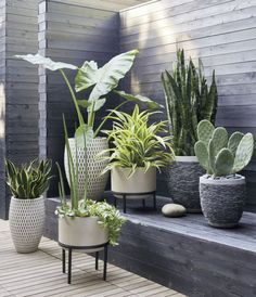 4 Grand Cool Ideas: Diy Backyard Garden Planters backyard garden trees how to grow.Backyard Garden Shed Storage backyard garden design thoughts. Rock Planters, Tall Planters, Cement Planters, Cement Patio, Garden Planters, Porch Planter, Modern Planters, Ikea Planters, Cement House