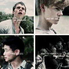 Thomas, Newt and Minho: three puzzle pieces that fit perfectly together Maze Runner Quotes, Maze Runner Funny, Maze Runner Trilogy, Maze Runner Cast, Maze Runner The Scorch, Maze Runner Thomas, Maze Runner Movie, Maze Runner Series, Movies And Series