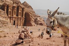 One Week in Jordan – A Sample Itinerary
