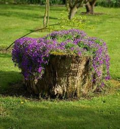 Tree Stump For Garden Art. you can use tree stumps in your garden as planters and they will give you a special charm that everyone will be admired. Diy Garden, Garden Trees, Garden Projects, Garden Art, Garden Ideas With Tree Stumps, Diy Projects, Flowers Garden, Herb Garden, Project Ideas