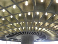 Ribbed ceiling inspired by bone architecture realized at the University of Freiburg (Germany). Source: Plant Biomechanics Group Freiburg
