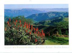 valley of the thousand hills - Google zoeken