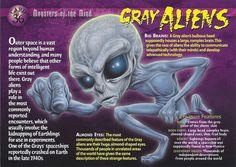 Card 36 - Grey Aliens