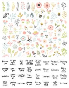 300 Wedding Floral Romantic Set by Qilli on Floral Illustrations, Botanical Illustration, Doodle Drawings, Doodle Art, Watercolor Flowers, Watercolor Art, Page Decoration, Decorations, Floral Drawing