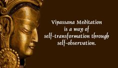 Vipassana Fellowship's online Meditation Course provides a supported introduction to Buddhist Meditation as found in the Theravada tradition. Resources and support for meditators and authoritative texts from the earliest Buddhist sources. Guided Meditation, Vipassana Meditation, Meditation Retreat, Morning Meditation, Mindfulness Meditation, Meditation Benefits, Meditation Quotes, Mindfulness In Plain English, Christian Meditation