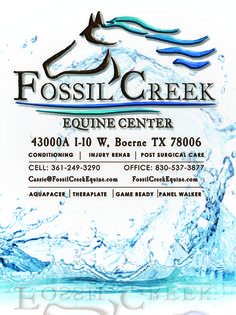 1/4 page print advertisement for Fossil Creek Equine Center!   fossilcreekequine.com