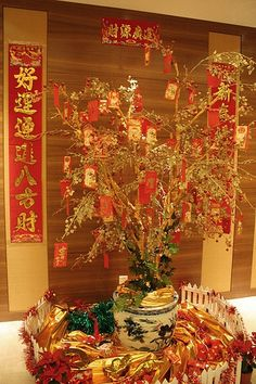 Make Your Own Feng Shui Money Tree for Chinese New Year! --------- #china #chinese #chinatown