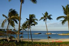 A view from our hotel in Oahu