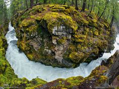 national scenic waterways | Rogue River-Siskiyou National Forest, Oregon