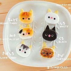 Fishcake cats