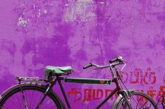 Magenta and the Bicycle