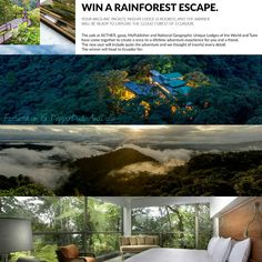 """♥🎁♥ #FridayGiveaway: #Wedding Edition... ✨ 5. 🌴 Win a Rainforest Escape #Sweepstakes by @Goop. Mashpi Lodge is a part of #NationalGeographic's """"Unique Lodges of the World,"""" and this exotic #vacation is perfect for couples who want to explore the beautiful jungles of #Ecuador!  ✨ #PutARingOnIt💎💍  ✨  #honeymoon #ecotourism #foodie #travel #seetheworld #win #giveaway #contest #bride #groom #vacation #weddinginspiration #weddingplanning #engaged  #weddingseason #getaway #wonderful_places"""