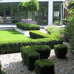 Slate Terrace Contemporary Garden designs by Lynne Marcus and built by the Garden Builders Contemporary Garden Design, Contemporary Bedroom, Landscape Design, Terrace Design, Garden Features, Outdoor Living, Outdoor Decor, English Roses, Hedges