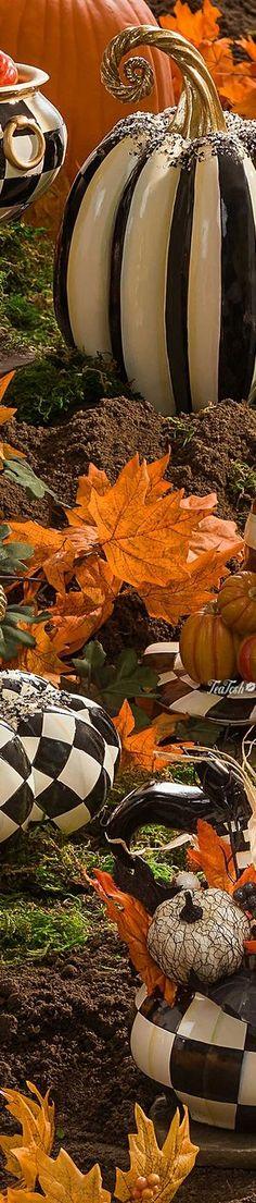 Seasons Poem, Seasons Of Life, Four Seasons, Halloween Celebration, Harvest Time, Trick Or Treat, Bloom, Pumpkin, Sky