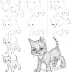 How to Draw a Kitten Easily | iCreativeIdeas.com Like Us on Facebook == https://www.facebook.com/icreativeideas
