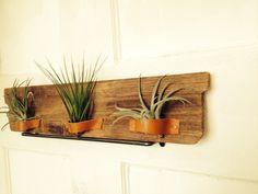 「DIY!木×革×植物 エアプランツホルダーをツクル」 |Smile! Happy! Sweet Home!|Ameba (アメーバ)