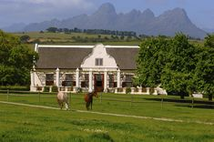 Just half an hour drive from Cape Town, the Stellenbosch wineries and vineyards settle in the magnificent valleys and mountain slopes. South African Wine, Cape Dutch, Dutch House, Dutch Colonial, Cape Town South Africa, Beautiful Places, Scenery, Outdoor Structures, Exterior