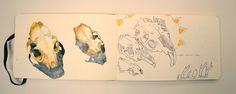 http://clelia.org/cranes aquarelle et croquis de crânes- chat et rongeurs