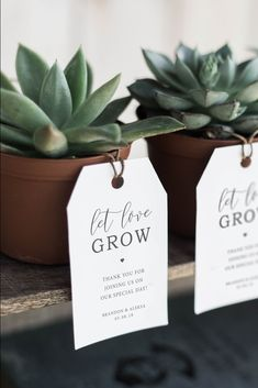 Printable Wedding Favor Tag - Let Love Grow - Plant Wedding Favor / Succulent Wedding Favor - Rustic Elegance - Rustic Wedding Favors - - Boda - Creative Wedding Favors, Inexpensive Wedding Favors, Rustic Wedding Favors, Beach Wedding Favors, Wedding Favors For Guests, Wedding Favor Tags, Bridal Shower Favors, Wedding Ideas, Wedding Shoes