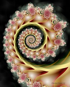 Tea Roses and Satin Ribbons by CVaznis on DeviantArt Spirals In Nature, Feng Shui, Computer Art, Weird Art, Deviantart, Mandala Coloring, Tea Roses, Fractal Art, Sacred Geometry