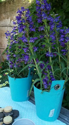 When creating new products, we always think about the perfect match with your plants! #bloomingwalls #thegreenpot #garden #gardening #design #irishdesign #pot #plants #aesthetic #blue #purple #green #greenthumb #flowers #outdoor #outdoorliving #beautiful #lovely #nature #natural #perfectmatch #match