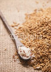 Paddy Rices ,the organic food ingredient of South East Asia