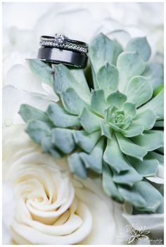 Ottawa-Table-40-Fraser-Cafe-Wedding-Stephanie-Beach-Photography-bouquet-rings