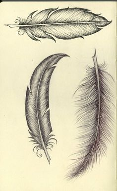 Feather Tattoo Stencils