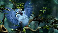 gabi wallpaper pictures from rio2 | ... from Rio 2 wallpaper - Click picture for high resolution HD wallpaper