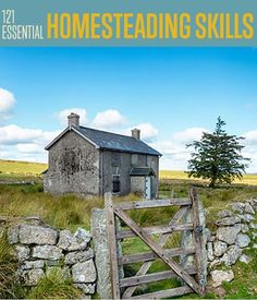 121 Homesteading Skills You Should Know