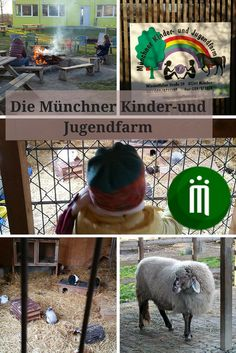 Angeregt durch einen Vorschlag unserer FuerKinder-App haben wir letzten Samstag die Kinder- und Jugendfarm in Neuaubing besucht. Da unsere Maus Tiere liebt und wir schon so oft im Tierpark waren, wollten wir da mal etwas anderes probieren.