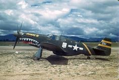 P51 shark mouth in color
