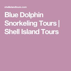 Blue Dolphin Snorkeling Tours   Shell Island Tours