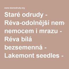 Staré odrudy - Réva-odolnější nemocem i mrazu - Réva bílá bezsemenná - Lakemont seedles - Ovocné stromy - 1,1M