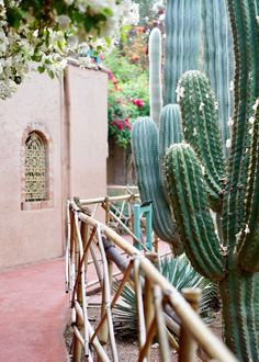 Pin this if you love the way cactus look! Marrakech Travel, Marrakech Morocco, Morocco Travel, Marrakech Gardens, Fresco, Small Fountains, Bamboo Tree, Most Beautiful Gardens, Enjoy The Sunshine